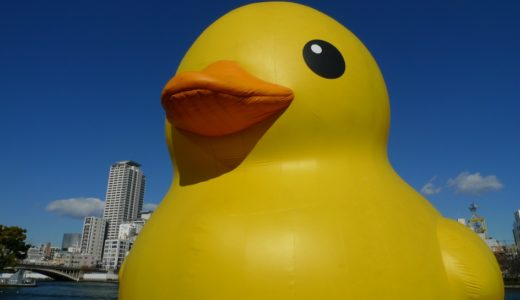 Rubber Duck Project 2009