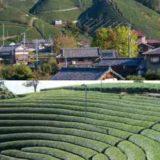 星野リゾートが京都府・和束町の宿泊施設開業に向け「パートナーシップ協定書」を締結!