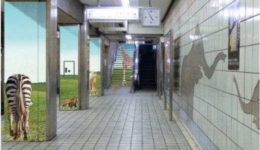 天王寺動物園の開園100周年にあわせて地下鉄御堂筋線の動物園前駅がリニューアル!大自然と動物でワクワク感あふれる空間に