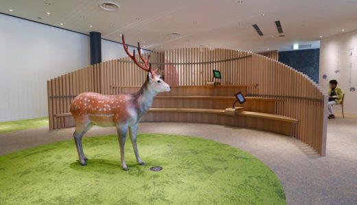 オープンした奈良公園バスターミナルは建物内部も気合が入った造りだった!(東棟2階編)