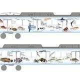 近鉄「鮮魚列車」が2020年3月運行終了。新たに「鮮魚車両」伊勢志摩お魚図鑑が登場!