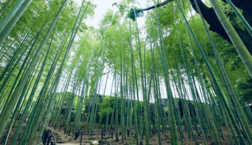 奈良公園の高畑町裁判所跡地に開園した瑜伽山園地(ゆうがやまえんち)「旧山口氏南都別邸庭園」が美しい!