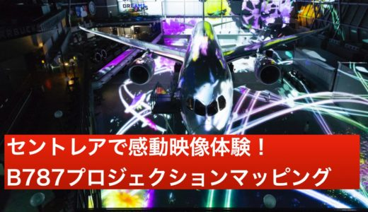 【動画】プロジェクションマッピング「フライ ウィズ 787 ドリームライナー」は感動的な美しさ!