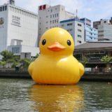 たゆたえども沈まず。ラバーダック2020 巨大あひるちゃんの展示が大阪・天満橋八軒家浜で始まる!