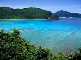奄美大島、徳之島、沖縄島北部、西表島の世界自然遺産への登録適当勧告!ユネスコの諮問機関(UCN)、7月決定