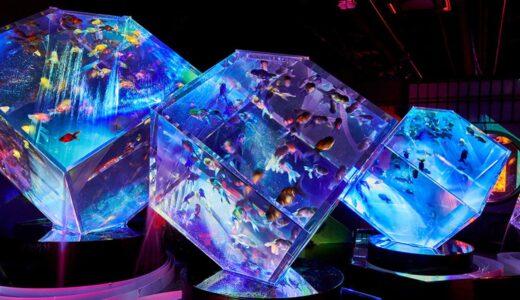 『アートアクアリウム展2021 』大阪・堂島リバーフォーラムにて開催!豪商:淀屋が見た「金魚が泳ぐ天井」を彷彿とさせる展示も!